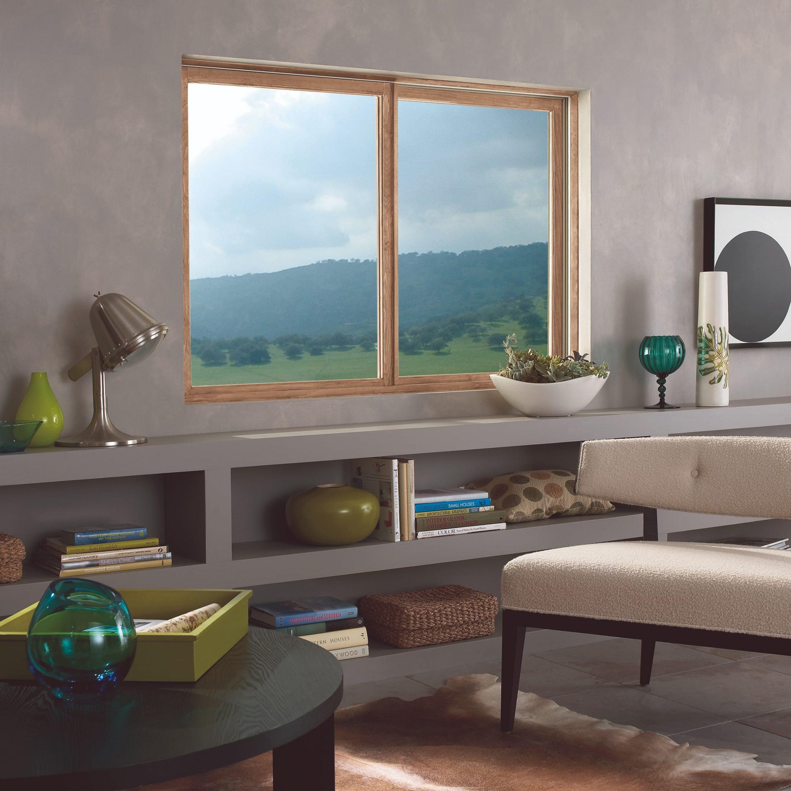 Glider/sliding window in living room