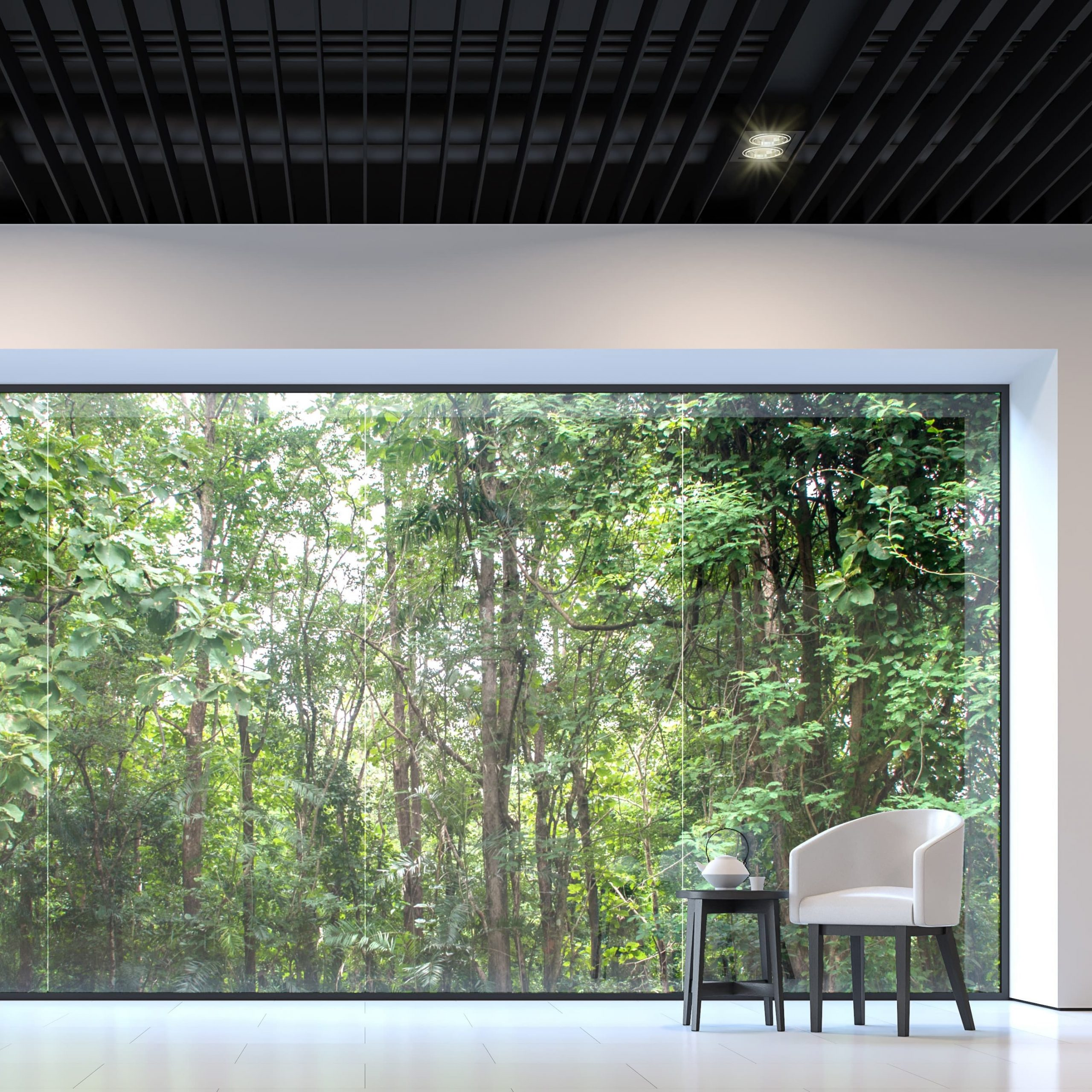 Scenic steel window in large sitting area